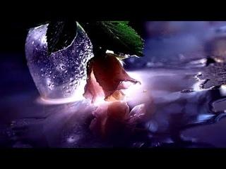 Какая обида живет в его сердце. Камень в душе.
