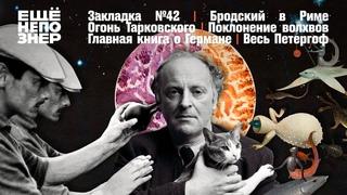 Рим Бродского, огонь Тарковского, Герман «Сеанса» и весь Петергоф #закладка №42 #ещенепознер