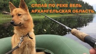 Сплав река Вель Архангельская область#сплав#ловля_на_спиннинг#velskii_hook