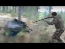 Отличная охота на кабана. видео подборка реальных охотничьих моментов.