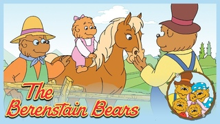 Berenstain Bears: The Baby Chipmunk/ The Wishing Star -