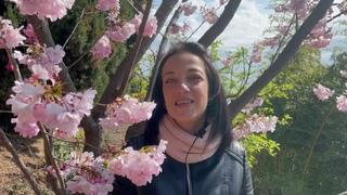 Сакура, Японский сад, Айвазовское, Партенит
