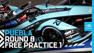 2021 CBMM Niobium Puebla E-Prix - Round 8 | Free Practice 1