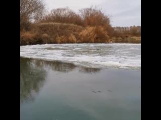 Вращающийся ледяной диск в Рязанской области - ноябрь 2020