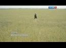Заставка телесериала Анка с Молдаванки Россия-1, 2015