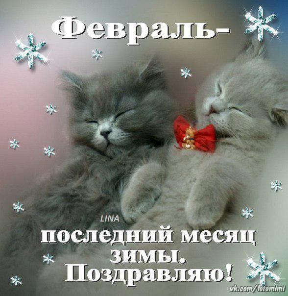 фото из альбома Натальи Коваленко №11