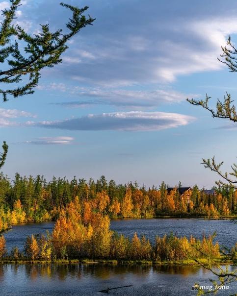 Наша короткая, но яркая северная осень 😍Фото: @mag_isma...