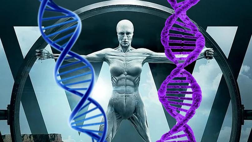 Мир Хаксли становится реальностью: ВОЗ выпустил рекомендации по редактированию генома человека, изображение №1