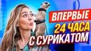 Маева Маша | Москва | 1
