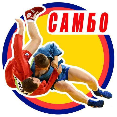 9 октября 2021 года в спорткомплексе «Олимп» прошло открытое Первенство города Ирбита по борьбе самбо