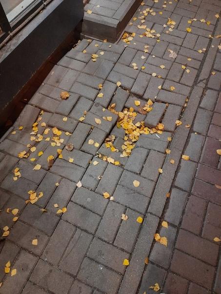 Тротуарная плитка выглядит, конечно, красиво, но т...