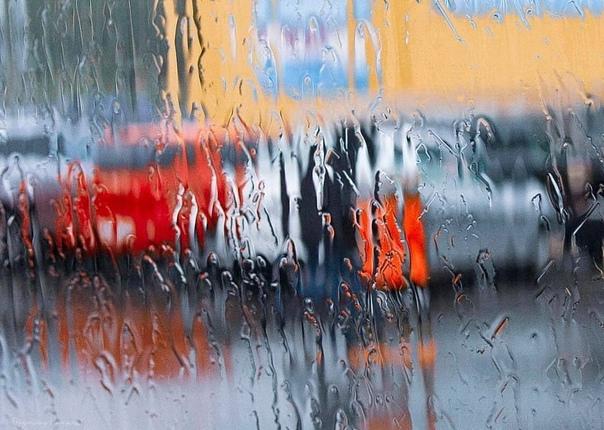 Несмотря на дождь и хмурую погоду🌧️Всем душевного ...