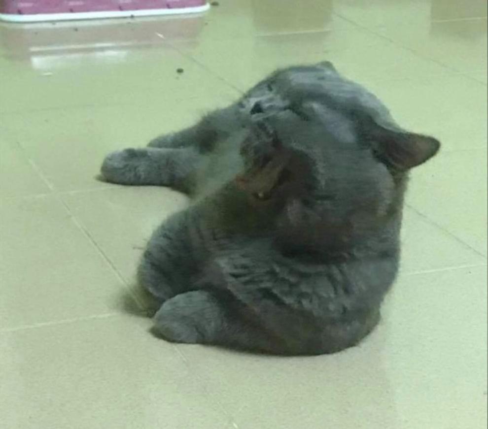 Мастер класс  как уснуть