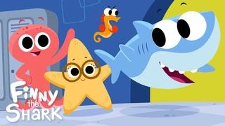 Line Up   Children's Song   Finny the Shark