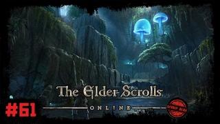The Elder Scrolls Online [#61] Ротгар. Нападение на Храм Гнева. Проблемы в каменоломне Серого Камня
