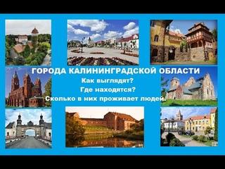 Города Калининградской области. Как выглядят, где находятся,  сколько в них проживает людей.
