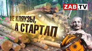 Мертвые души по-забайкальски: лесничий создал ОПГ по вырубке леса